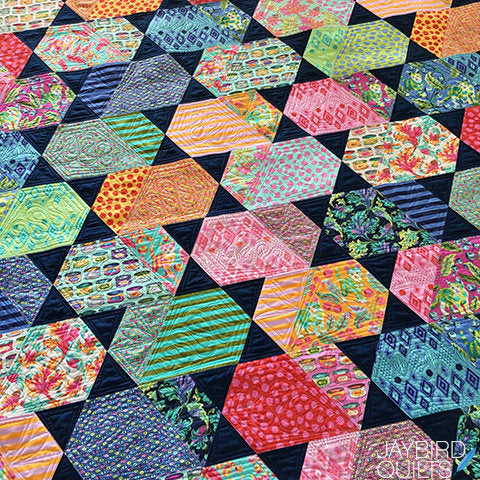 Comet Quilt Kit featuring Tabby Road by Tula Pink