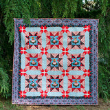 Holidays with Our Homies Original Quilt Kit in Gray by Tula Pink