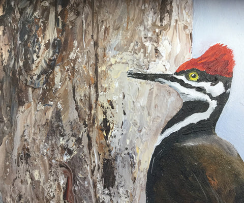 Pileated by Helen Hall