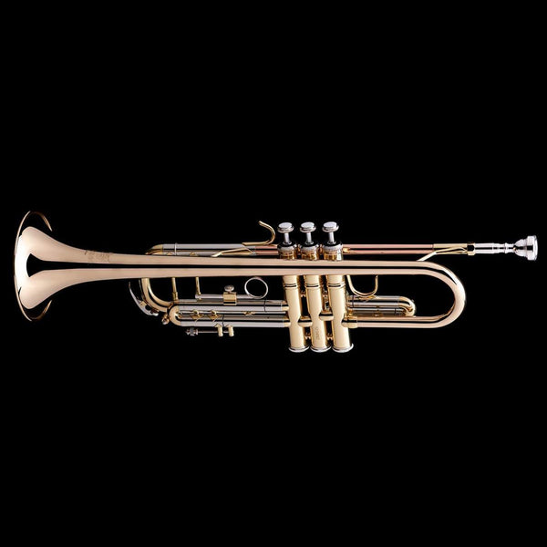 An image of a Bb Professional Trumpet from Wessex Tubas
