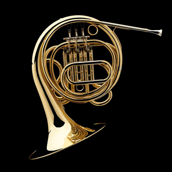 F French Horn (student) – FH20
