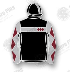 Sagamore Silks Pin