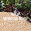 Meadow View Landscaping Alpine Gold Chippings 6mm
