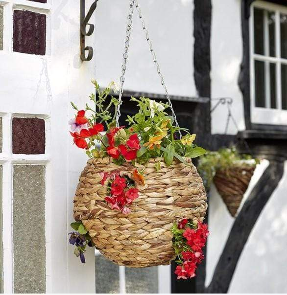 Smart Garden Hanging Baskets Hyacinth Hanging Ball