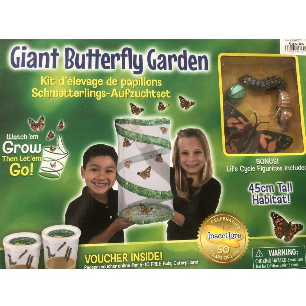 Insect Lore Eductional toys Insect Lore Giant Butterfly Garden