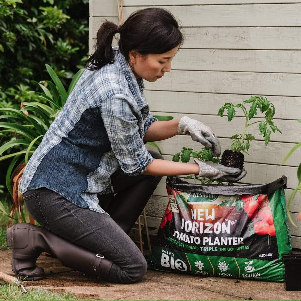 Westland Horticulture Compost New Horizon Tomato Planter