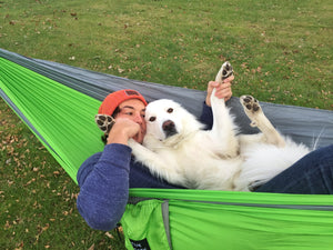 A fluffy white dog and his owner lay together in a light green camping hammock