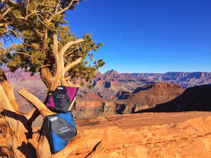 Blue and pink microfiber towel sitting in a tree at the Grand Canyon.