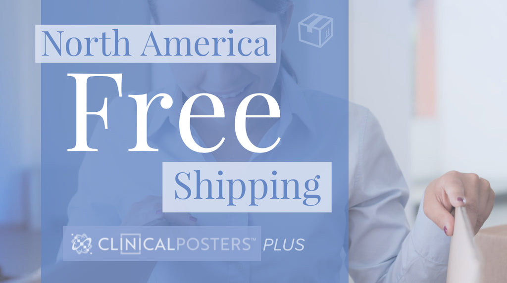 Free North America Shipping