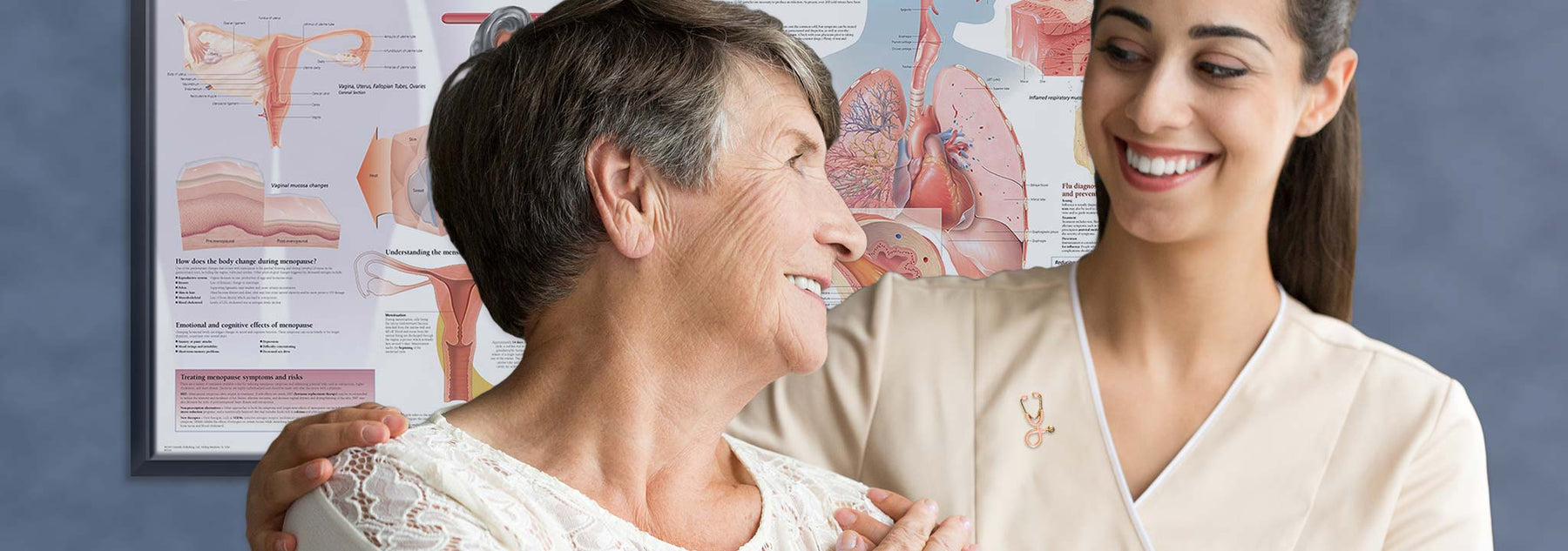Female nurse with elderly patient and framed anatomy posters
