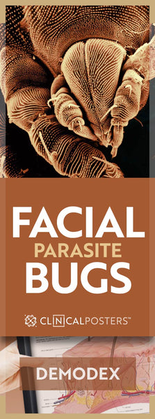 Can You Get Rid of Bug in Your Face?