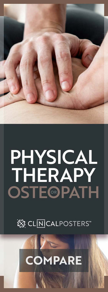Physiotherapy or Osteopath pin