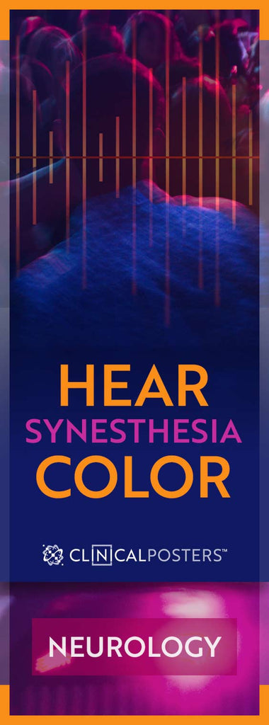 Stereo Synesthesia Color