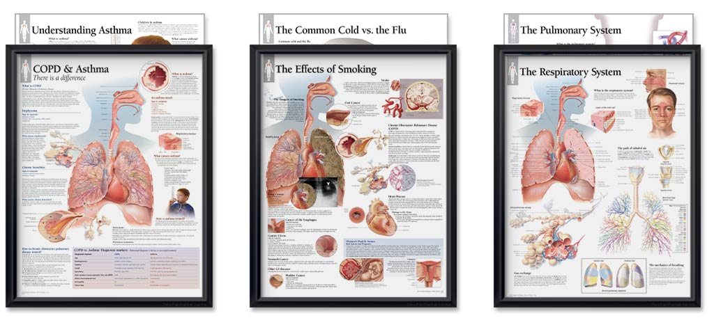 Pulmonology Bundle