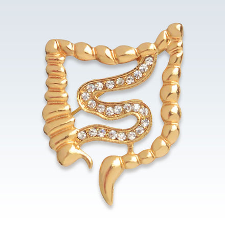 Anatomical Gastroenterology Gold Lapel Pin