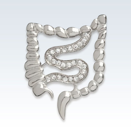 Anatomical Gastroenterology Lapel Pin Silver
