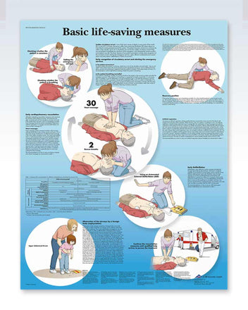 Basic Life-Saving Measures Anatomy Poster