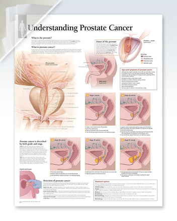 Prostate Cancer damaged poster