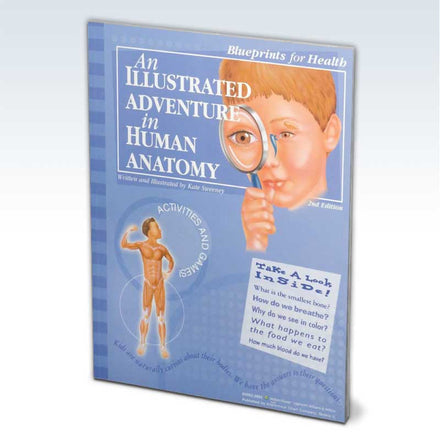 Illustrated Adventure in Human Anatomy Book