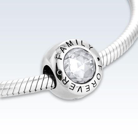 Family Forever Sterling Silver Zirconia Charm