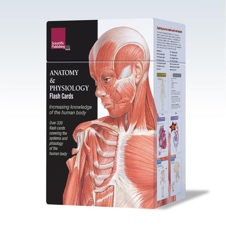 Anatomy and Physiology Flash Cards