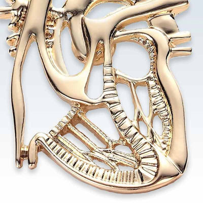 Gold Dissected Heart Lapel Pin Detail