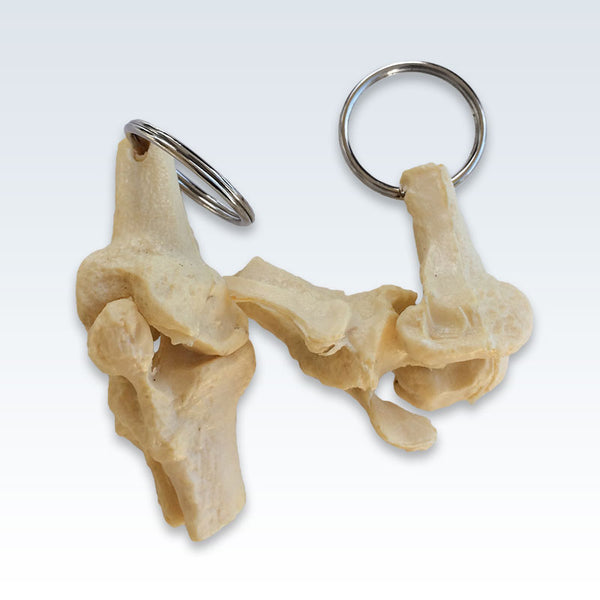 Knee Joint Keychains