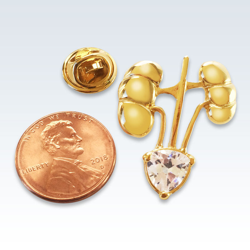 Gold Kidneys Lapel Pin Size