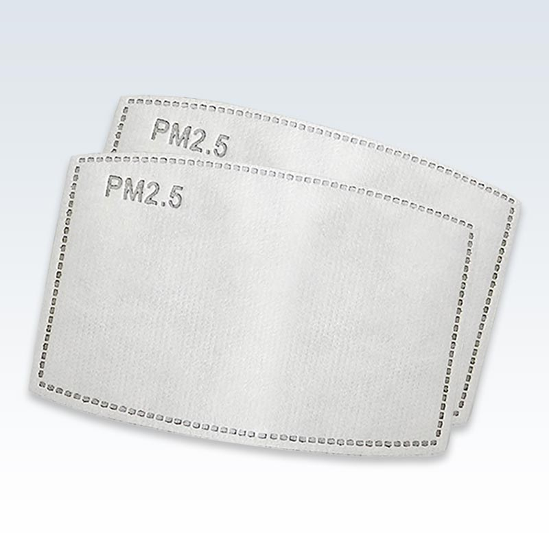 PM 2.5 Carbon Filter Pair