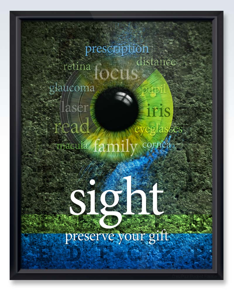 Framed Sight - Preserve Your Gift poster