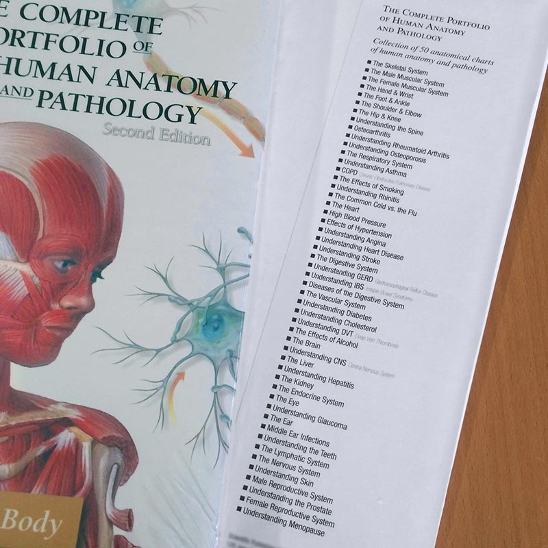 Portfolio of Human Anatomy and Pathology Contents