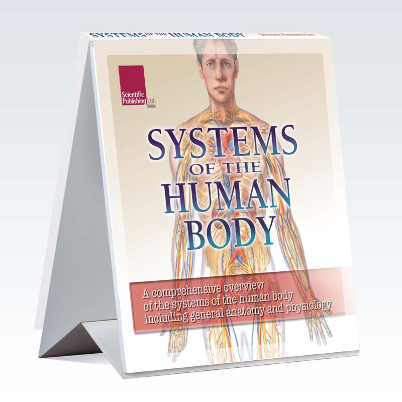 Systems of the Human Body Flip Chart