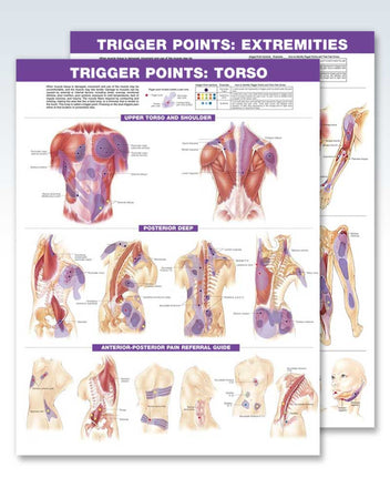 Trigger Points Set anatomy posters