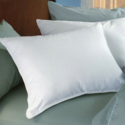 SilverClear Bed Pillows