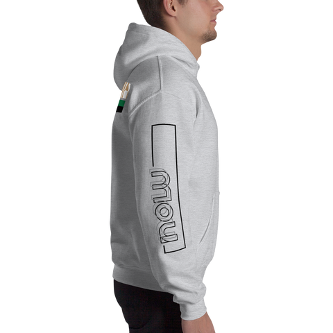 Now Hooded Sweatshirt: Heather Grey