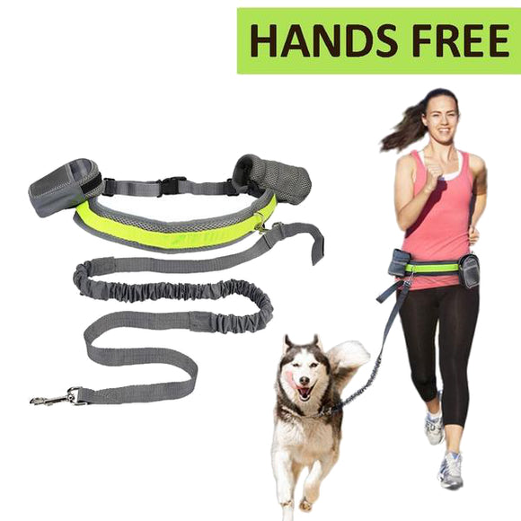 Hands Free Leash For Large Dogs, Jogging Dog Leash
