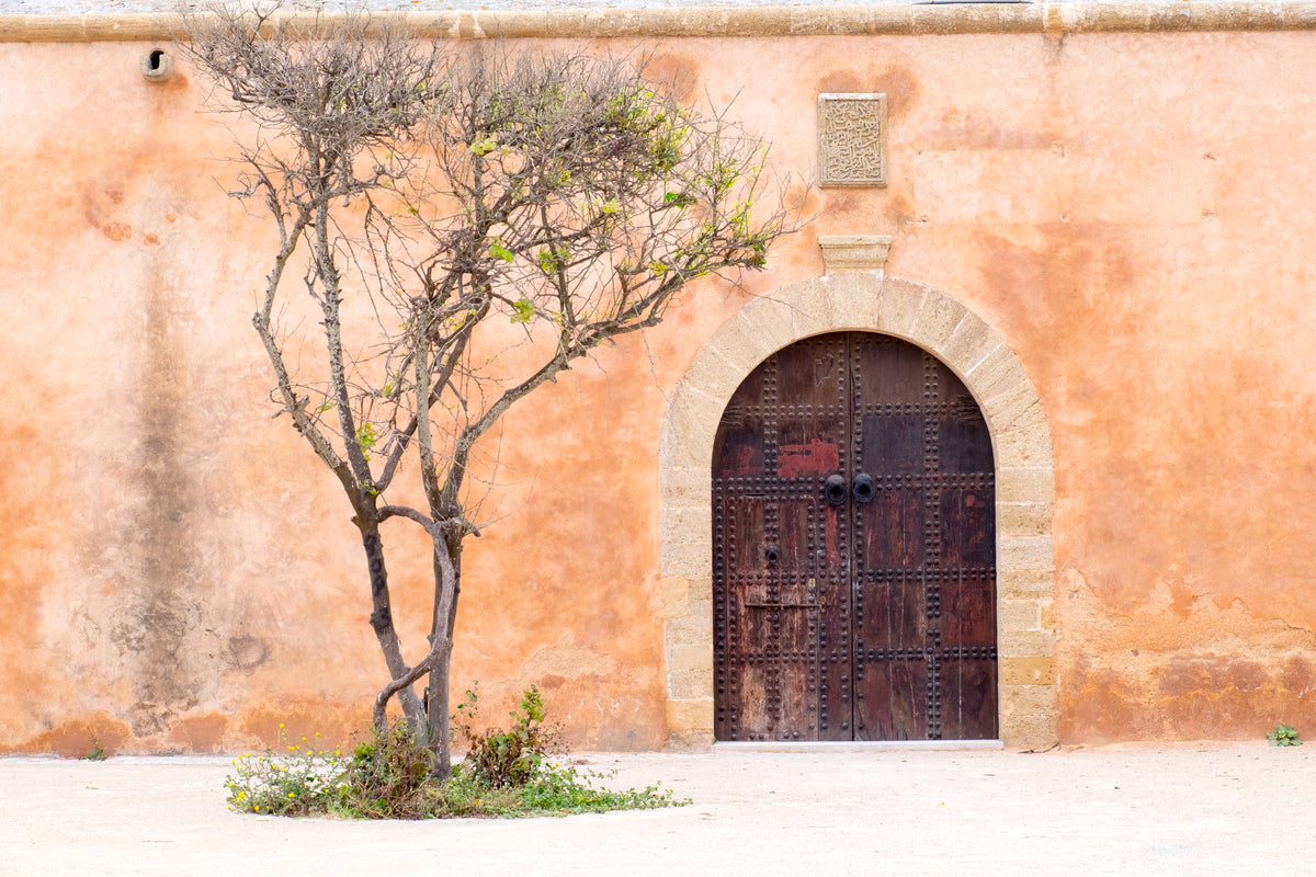 Morocco Old door skincare beauty