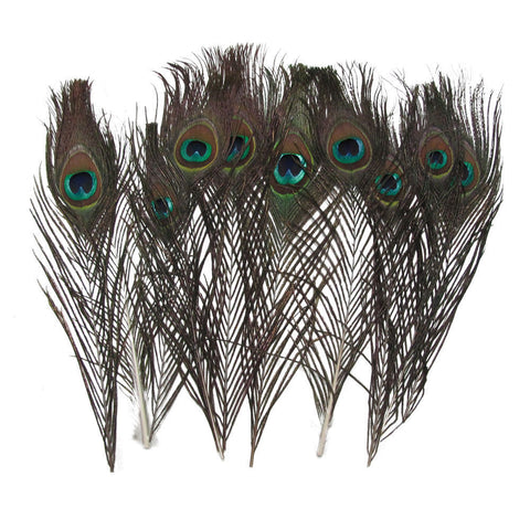 Natural Peacock Tail Feather for Parties Costumes House Decoration - Rewardeals
