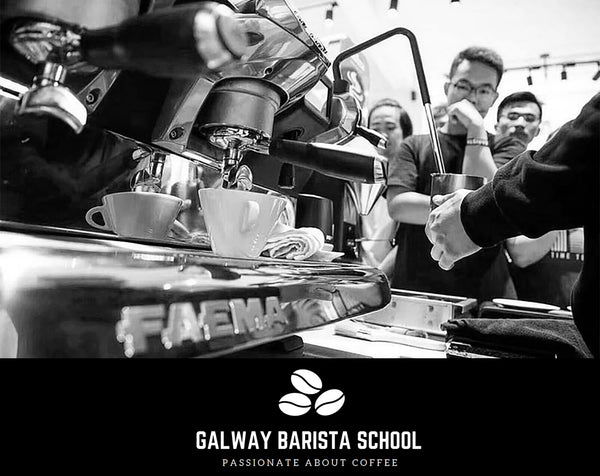 Galway Barista School Private Cafe Training For Staff