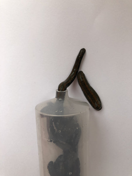 Leech Tube for Easy Latching
