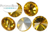 Potomac Crystal Rivoli - Topaz 10mm Pack of 5