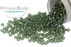 Miyuki Seed Beads - Dyed SF Silver Lined Moss Green 15/0