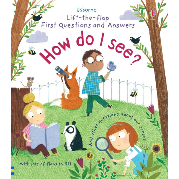 Usborne How I See Flap Book