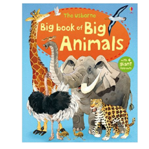 Usborne Big Books Animals