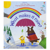 Usborne Flap What Makes it Rain?