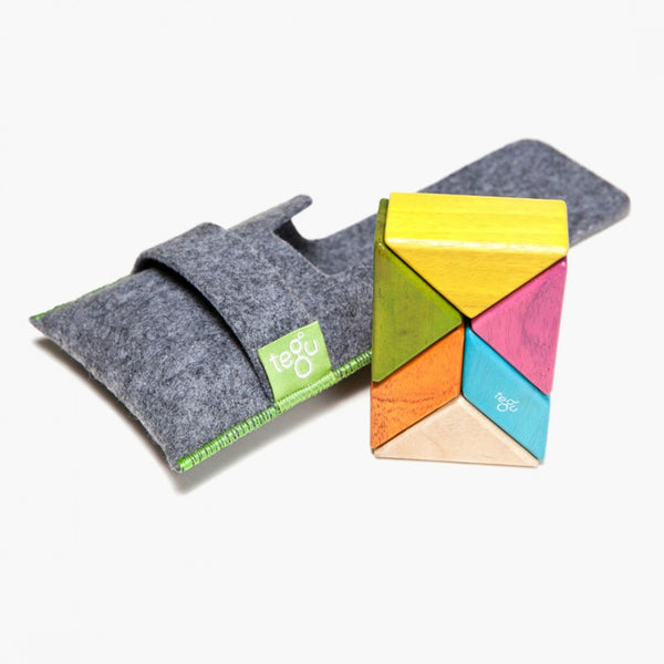 Tegu Magnetic Blocks Pocket Pouch Prism Tints
