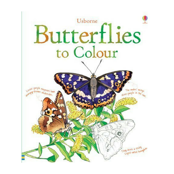 Usborne Nature Coloring Butterflies