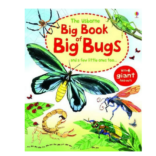 Usborne Big Books Bugs