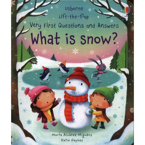 Usborne What is Snow? Flap Book