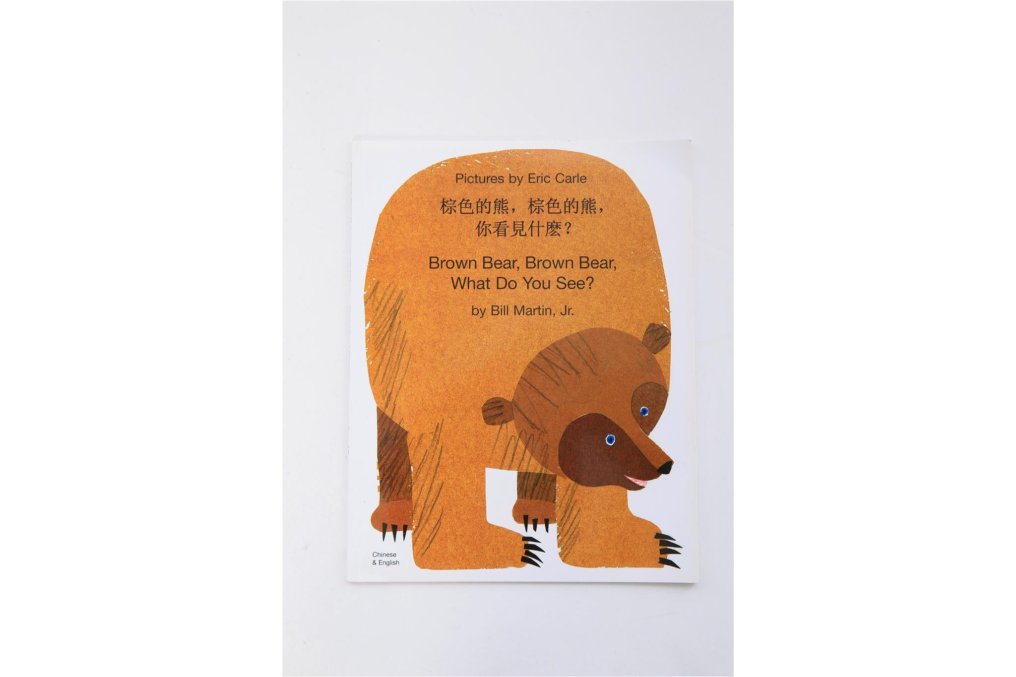 Bilingual book (English and Mandarin Chinese): Brown Bear, Brown Bear, What Do You See?